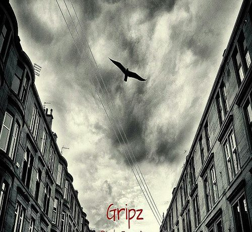Gripz - Birds Eye View (prod. by The Cratez)