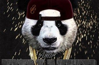 Amir Driver x Desiigner - Panda Driver (Remix)