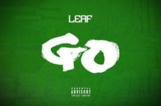 Leaf - Go