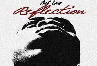 Ash Law – Reflection