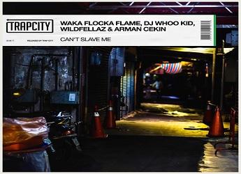 Waka Flocka, DJ Whoo Kid, Wildfellaz & Arman Ceckin - Can't Slave Me