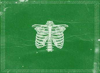 Brady Watt - Roots Around My Ribcage (Statik Selektah Remix)