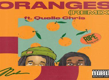 Nolan The Ninja ft. Quelle Chris - Oranges RMX
