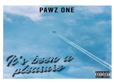 Pawz One - It's Been A Pleasure